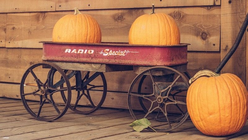Pumpkins in a red wagon in Boone